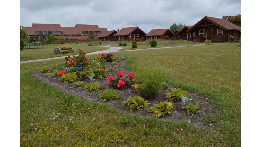 Rąstinių namelių nuoma Šventojoje